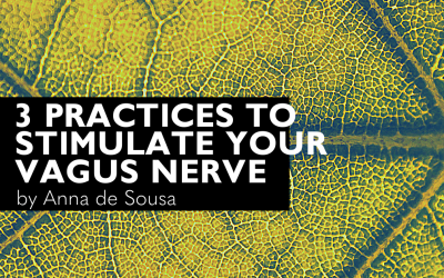 3 Practices to Stimulate your Vagus Nerve