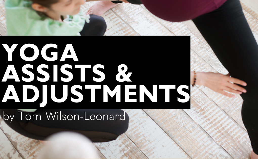 Yoga Assist & Adjustments with Tom Wilson-Leonard